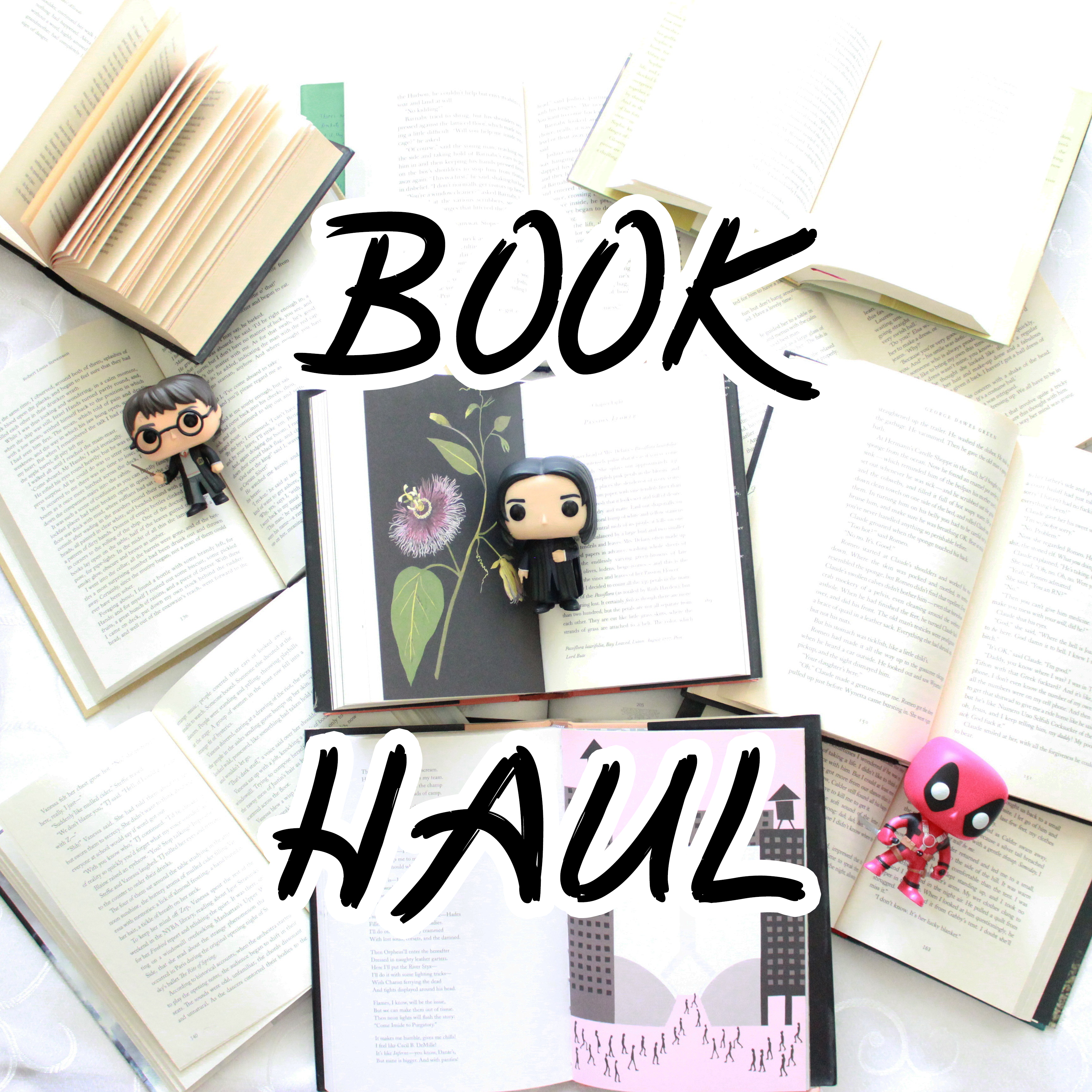 7] Book Haul! (I should maybe never go to another Big Bad